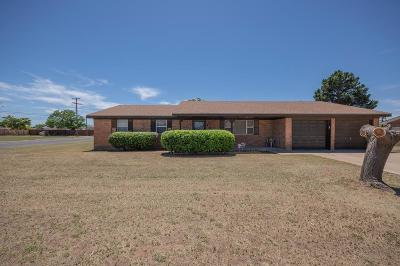 Midland Single Family Home For Sale: 101 W Pine Ave