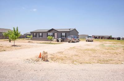 Midland TX Single Family Home For Sale: $180,000
