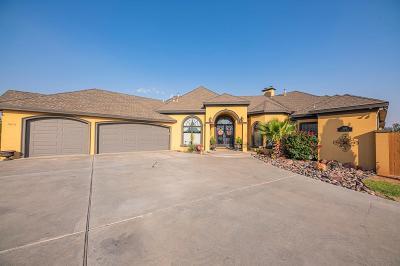 Midland Single Family Home For Sale: 3610 Cynthia Dr