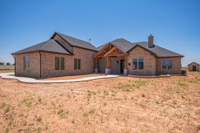 Midland Single Family Home For Sale: 13210 E County Rd 116
