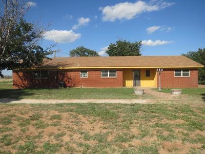 Midland Single Family Home For Sale: 2201 E County Road 140