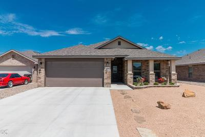 Midland Single Family Home For Sale: 1311 Yellow Rose Ct