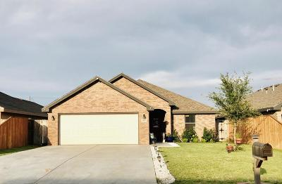 Midland Single Family Home For Sale: 303 S Mineola St
