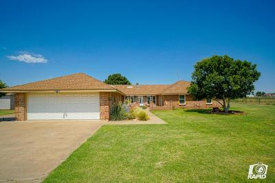 Midland Single Family Home For Sale: 9705 S County Rd 1213