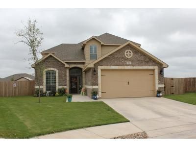 Midland Single Family Home For Sale: 818 Pentagon Rd