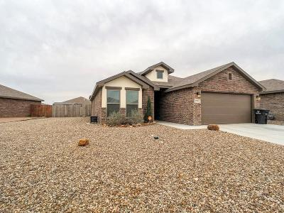 Midland Single Family Home For Sale: 6909 Yellow Rose Ct