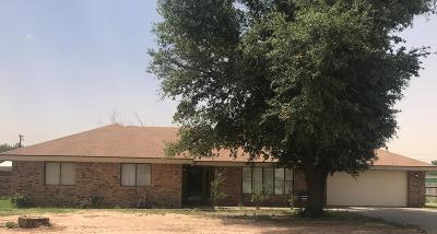 Odessa Single Family Home For Sale: 13900 W County Rd 123