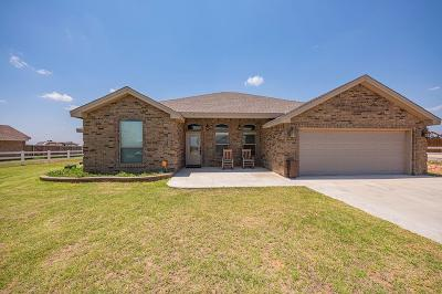 Midland Single Family Home For Sale: 1206 S County Rd 1118