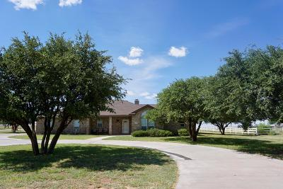 Midland Single Family Home For Sale: 12101 E County Rd 101