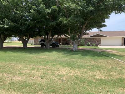 Midland Single Family Home For Sale: 4101 S County Rd 1185