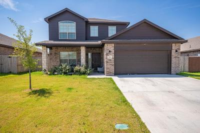 Odessa Single Family Home For Sale: 7204 Brooks Ranch Rd