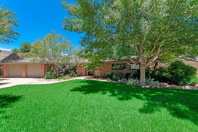 Midland TX Single Family Home For Sale: $795,000