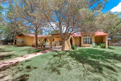 Single Family Home For Sale: 10701 E County Rd 95
