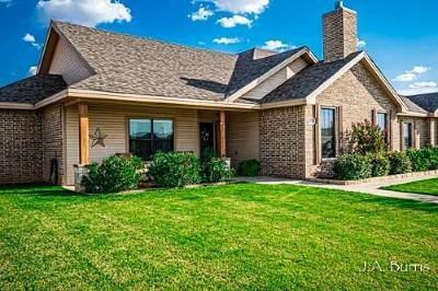 Midland Single Family Home For Sale: 6908 E County Rd 92