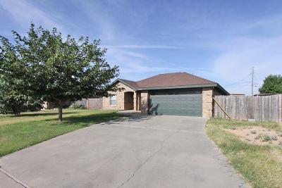 Midland Single Family Home For Sale: 3403 Edwards St.