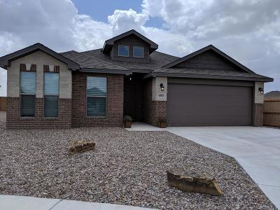 Midland Single Family Home For Sale: 6813 Big Bend Country