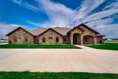 Midland Single Family Home For Sale: 2901 S County Rd 1057