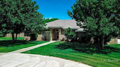 Midland Single Family Home For Sale: 5629 E County Rd 97