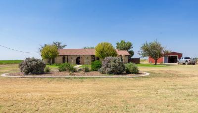 Stanton Single Family Home For Sale: 3351 Fm 3113