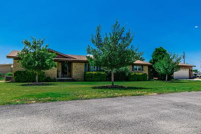 Midland Single Family Home For Sale: 12001 W County Rd 52w