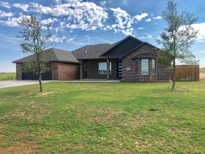 Midland Single Family Home For Sale: 1507 S County Rd 1069