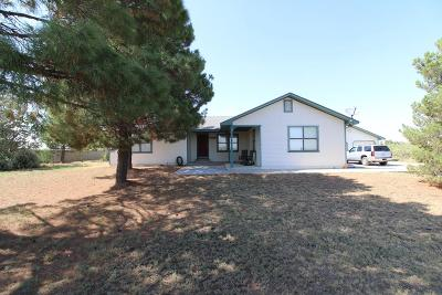 Midland Single Family Home For Sale: 11100 County Rd 150
