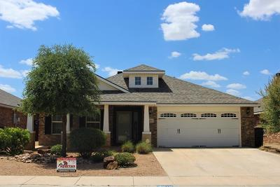 Midland Single Family Home For Sale: 619 Dimaggio Ct