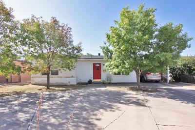 Midland Single Family Home For Sale: 4009 Anetta Dr