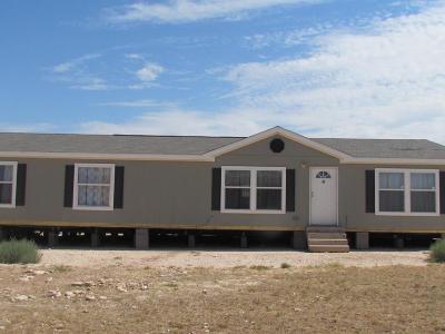 Midland Single Family Home For Sale: 9900 B E County Rd 90