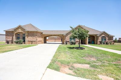 Midland Single Family Home For Sale: 10100 W County Rd 75