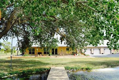 Midland Single Family Home For Sale: 2001 E Fm 1379