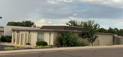 Midland Single Family Home For Sale: 2200 N H St