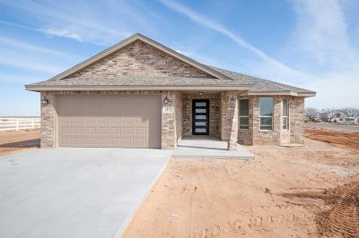 Midland Single Family Home For Sale: 2433 S County Rd 1060
