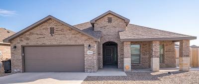 Midland Single Family Home For Sale: 1505 Buffalo Gap
