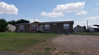 Midland Single Family Home For Sale: 6006 E County Rd 85