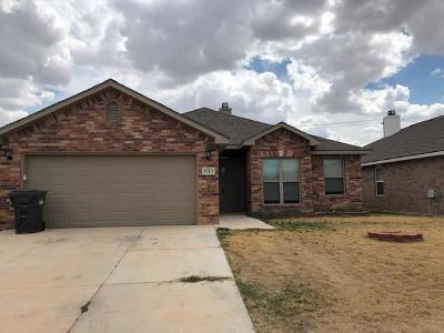 Midland TX Rental For Rent: $2,750