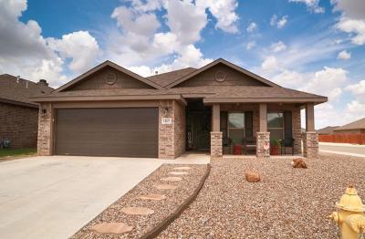 Midland Single Family Home For Sale: 1407 Wrangler Lane