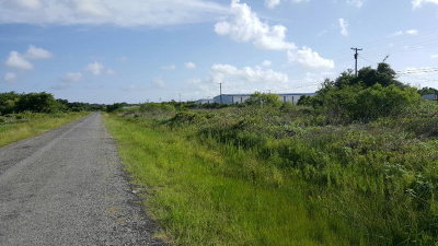 Residential Lots & Land For Sale: St Charles Loop W