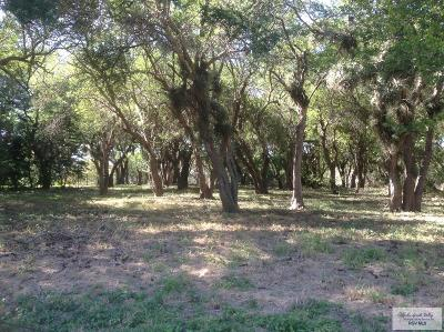 Rancho Viejo Residential Lots & Land For Sale: 208 Tesoro Ave. #13