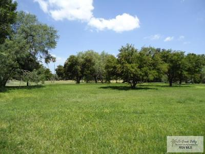 Rancho Viejo Residential Lots & Land For Sale: Morelos Ave. #5608