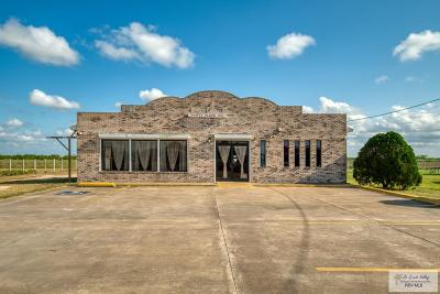 Los Fresnos Commercial For Sale: 36168 State Highway 100