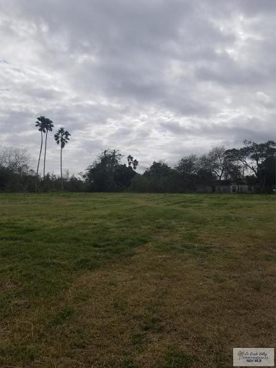 Brownsville Commercial Lots & Land For Sale: 9000 S Boca Chica Blvd.