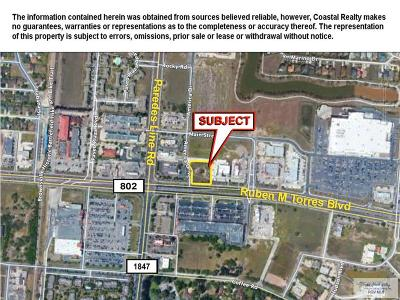 Brownsville Commercial Lots & Land For Sale: - Fm 802