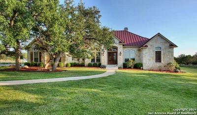 Boerne Single Family Home For Sale: 210 Greystone Cir