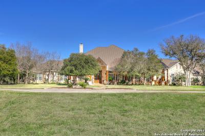 Boerne Single Family Home For Sale: 139 Park Ridge