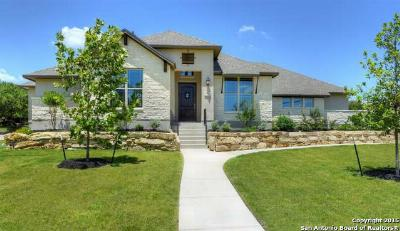 San Antonio TX Single Family Home Sold: $425,000