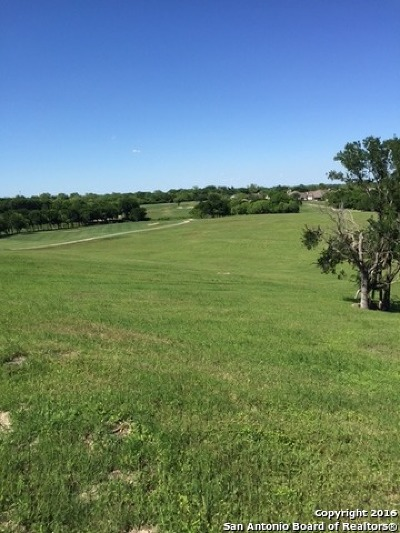 Guadalupe County Residential Lots & Land For Sale: 123 Pinnacle Dr