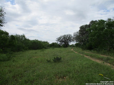 Atascosa County Farm & Ranch For Sale: 000 S State Highway 16