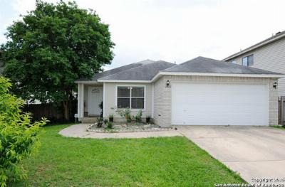San Antonio TX Single Family Home Sold: $124,999