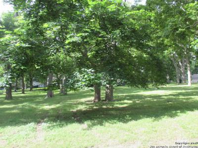 Seguin Residential Lots & Land For Sale: Lot 79 Arroyo